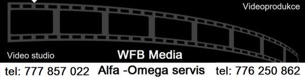 Svatební videa a videonahrávky v Plzni